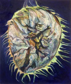 SUNFLOWER CRANIUM - 2016 - oil on canvas - 60x50 cm